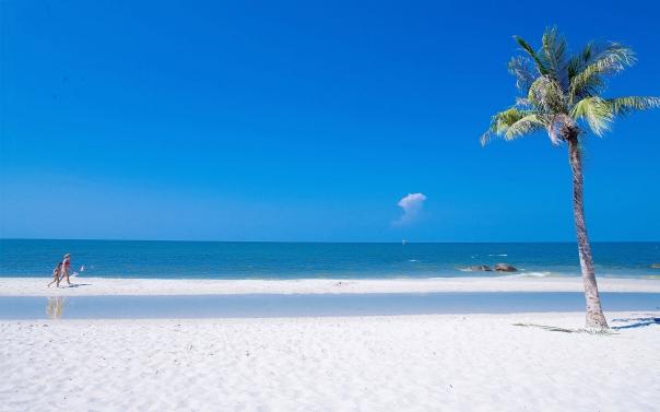 Beach-Summer-Ocean